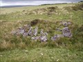 Image for Tinners Hut Cherrybrook, North Dartmoor