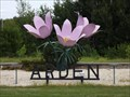 Image for World's Largest Crocus - Arden MB