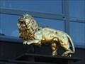 Image for Golden Lion - Hillesheim - RLP / Germany