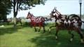 Image for DO RÉ MI FA SOL LA SI DO Le cheval / The horse - Québec, Canada