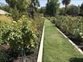 Image for McKinley Park Rose Garden - Sacramento, CA