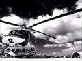 Image for Los Alamitos Army Airfield - Los Alamitos, CA