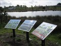 Image for Fairview Wetlands Flora & Fauna - Salem, Oregon