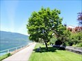 Image for Nakusp Waterfront Walkway - Nakusp, BC