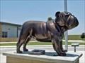 Image for Bulldog - Three Rivers, TX