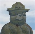 Image for Smokey Bear - AZ 188, Tonto National Forest, Arizona