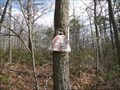 Image for Managed Hunting Area sign being consumed by tree - Rocky Gap State Park- Flintstone, Maryland
