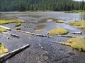 Image for Hell Creek, Oregon