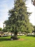 Image for Capt William D McGrath - Colton, CA
