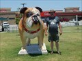 Image for Yukon OnCue dog park, Yukon Oklahoma United States