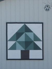 Pine Tree Barn Quilt, rural Grundy Center, IA - Painted Barn ... : pine tree quilts - Adamdwight.com
