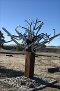 Image for Harley Tree - Bellemont, AZ