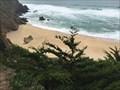 Image for Gray Whale Cove State Beach - Montara, California