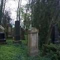 Image for Židovský hrbitov / The Jewish Cemetery, Spomyšl, Czechia