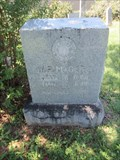 Image for W. P. Magers -- Burke Cemetery, Fort Worth, TX