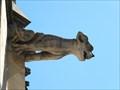 Image for Gargoyles at St.-Quintinus-Kathedrale (Hasselt), Limburg / Belgium