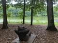 Image for Lake Needwood Bear - Rockville, Maryland