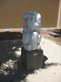 Image for Cat Washing - Napa, CA
