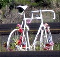 Image for David Sciera- Ghost Bike, Santa Fe, NM