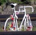 Image for David Sciera- Ghost Bike, Santa Fe, NM