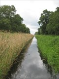 Image for Holme Fen National Nature Reserve - Cambridgeshire