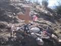 Image for Mercy Air Crash - Cajon, CA