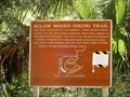 Image for Bulow Woods Hiking Trail - Ormond Beach, FL