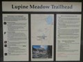 Image for Lupine Meadow Trailhead - Grand Teton N.P., Wyoming