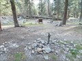 Image for Lodgepole C G pump - Sequoia N P CA