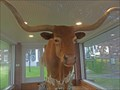 Image for Stuffed Longhorn on Courthouse Lawn - George West, TX