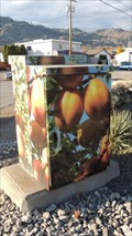 Image for Apricots - Oliver, British Columbia