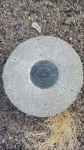 Image for JR0252 - USC&GS 'L 359' BM - Mineral County, NV