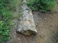 Image for Petrified Tree - Wintersmith Park Historic District - Ada, OK