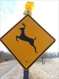 Image for Deer Crossing East - Ferrysburg, Michigan