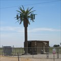 Image for I-8 Palm Tree Cell 1 - El Centro, CA