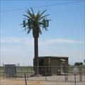 Image for I-8 Palm Tree Cell 1 - El Centro, CA