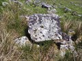 Image for Gidleigh/Throwleigh Parish Boundary Stone, Wildtor Well, NE Dartmoor.