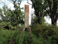 Image for All that remains is the chimney, old home chimney, near Clio, SC