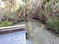 Image for Juniper Run Creek - Ocala National Forest, FL