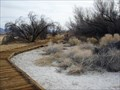 Image for Crystal Springs Interpretive Boardwalk Trail - Ash Meadows, NV