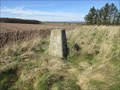 Image for Muirheads Trig Pillar - Angus, Scotland.