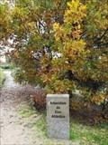 Image for Arboretum do Eixo Atlántico - Ourense, SP