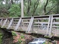 Image for Uvas Canyon County Park Footbridge - Morgan Hill, CA