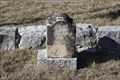 Image for C. O. Coffy -- Pioneer Rest Cemetery, Menard TX
