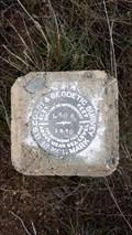 Image for MW0237 - USC&GS 'L 602' BM - Modoc County, CA