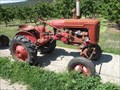 Image for Massey Harris Tractor Older and Smaller - Gatzke's Farm Market - Oyama, British Columbia