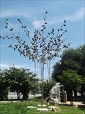 Image for The Generation Tree - Abilene, TX