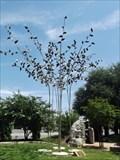 Image for The Generation Tree - Abilene, TX