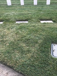 Kern W. Dunagan, Ground Setting, San Francisco National Cemetery