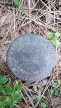 Image for USDOI/BLM T35S R4E S19 S20 S29 S30 Cadastral Survey Disk - Jackson County, OR